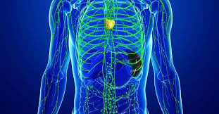 Lymphatic System and Deep Breathing